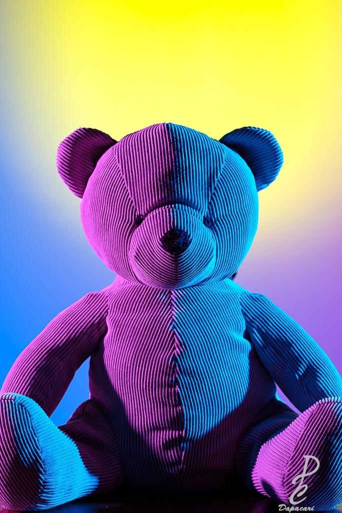 packshot vaise ours en peluche coloré flash gel